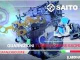 Saito1