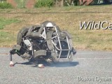 Boston-Dynamics-Wildcat-Robot